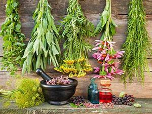cannalife-botanicals-topicals